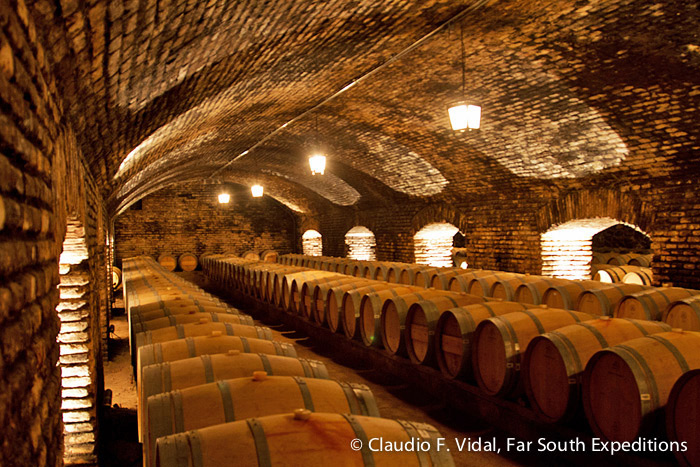 The Devil's Cellar, Viña Concha y Toro, Maipo Valley, Chile © Claudio F. Vidal, Far South Expeditions