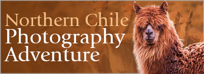 Northern Chile Photography Adventure