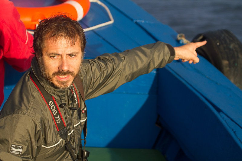 Birding guide and naturalist Rodrigo Tapia while guiding one of our pelagic trips off Valparaiso, central Chile © Claudio F. Vidal, Far South Expeditions