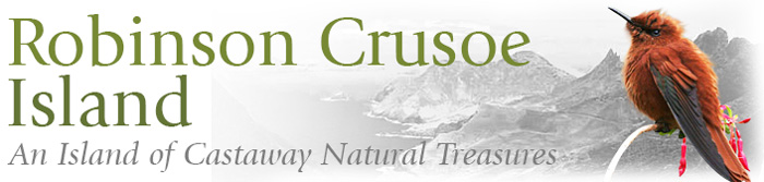 Robinson Crusoe, An Island of Castaway Natural Treasures